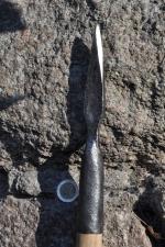 Javeline quadrangulaire -